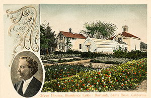 Luther Burbank Home & Gardens postcard