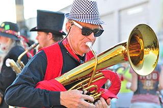 Honk Fest musician